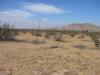 Photo of Tiama Road, Apple Valley, CA (MLS # 491917)