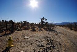 Photo of Tokay Road, Phelan, CA 92371 (MLS # 493375)