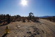 Photo of Tokay Road, Phelan, CA 92371 (MLS # 493375)