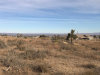 Photo of Johnson Road, Phelan, CA 92371 (MLS # 493548)