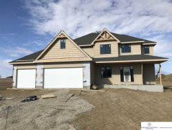Photo of 4522 S 217 Avenue, Omaha, NE 68022 (MLS # 22003440)