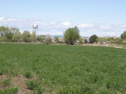 Photo of 113 Nw 4th St, Fruitland, ID 83109 (MLS # 98667681)