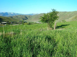 Photo of Lot #29 Brookside, Horseshoe Bend, ID 83629 (MLS # 98649739)