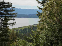 Photo of Anderson Creek & West Mountain, Cascade, ID 83611 (MLS # 98664587)