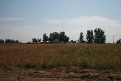 Photo of Tbd Se 2nd Ave., New Plymouth, ID 83655-5343 (MLS # 98667315)