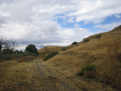 Photo of Tbd Speas Rd, Fruitland, ID 83619 (MLS # 98671242)