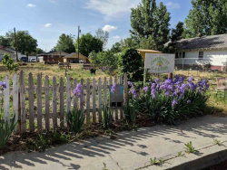Photo of 512-516 15th Ave S, Nampa, ID 83651 (MLS # 98693246)