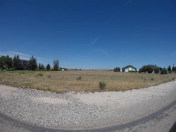 Photo of 26440 Pheasant Landing Rd, Middleton, ID 83644 (MLS # 98696023)