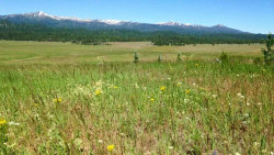 Photo of Lot 3 Liberty Springs #2, Cascade, ID 83611 (MLS # 98707552)