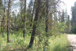 Photo of 1464 Crown Point Parkway, Cascade, ID 83611 (MLS # 98718130)