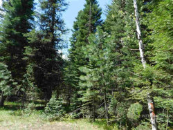 Photo of 12825 Chuckwagon Rd, Donnelly, ID 83615 (MLS # 98722539)