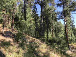 Photo of Tbd2 Middle Fork Rd, Garden Valley, ID 83622 (MLS # 98742052)
