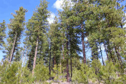 Photo of 0 Warm Lake Rd, Cascade, ID 83611 (MLS # 98757520)