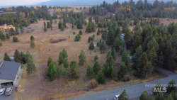Photo of 350 Moon Dr, McCall, ID 83638 (MLS # 98784575)