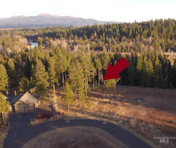Photo of 41 Shooting Star Place, McCall, ID 83638 (MLS # 98786261)