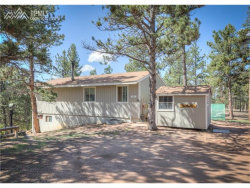 Photo of 137 Columbine Road, Florissant, CO 80816 (MLS # 4255566)