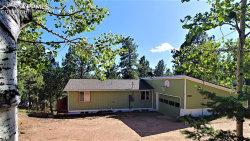 Photo of 364 Gardenia Road, Woodland Park, CO 80863 (MLS # 4399329)