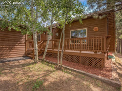 Photo of 235 S Park Street, Woodland Park, CO 80863 (MLS # 4459971)