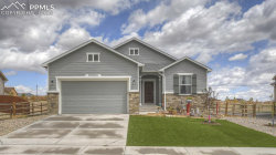 Photo of 10903 Checo Way, Peyton, CO 80831 (MLS # 4460962)