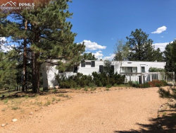 Photo of 288 Forest Glen Trail, Florissant, CO 80816 (MLS # 4532764)
