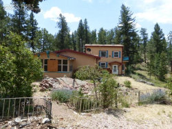 Photo of 203 Apache Trail, Florissant, CO 80816 (MLS # 4583830)