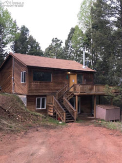 Photo of 203 Banner Trail, Florissant, CO 80816 (MLS # 4717185)
