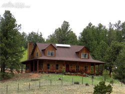 Photo of 1241 Conestoga Creek Road, Florissant, CO 80816 (MLS # 4727074)