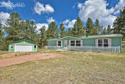 Photo of 276 Manchester Drive, Florissant, CO 80816 (MLS # 4736869)