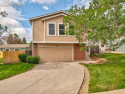 Photo of 6149 Lowlander Court, Colorado Springs, CO 80922 (MLS # 4770487)