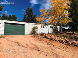 Photo of 519 E Fern Road, Woodland Park, CO 80863 (MLS # 5014195)