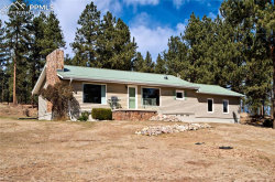 Photo of 2197 County 46 Road, Florissant, CO 80816 (MLS # 5686729)