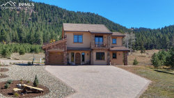 Photo of 841 Majestic Parkway, Woodland Park, CO 80863 (MLS # 5705338)