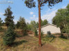 Photo of 2270 Pikes Peak Drive, Florissant, CO 80816 (MLS # 5744447)
