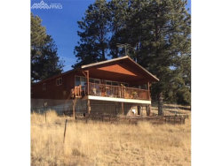 Photo of 181 DILLON Lane, Florissant, CO 80816 (MLS # 5776037)
