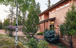 Photo of 123 Homestead Drive, Woodland Park, CO 80863 (MLS # 5832919)