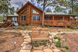 Photo of 1910 Wildhorn Road, Florissant, CO 80816 (MLS # 5879145)