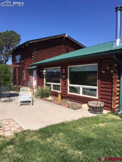 Photo of 38450 County J.5 Road, Mancos, CO 81328 (MLS # 5920652)
