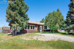 Photo of 221 Florissant Street, Cripple Creek, CO 80813 (MLS # 6014103)