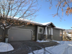 Photo of 16940 Buffalo Valley Path, Monument, CO 80132 (MLS # 6119747)