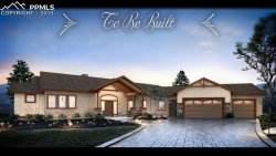 Photo of 630 Meadowlark Lane, Woodland Park, CO 80863 (MLS # 6143511)