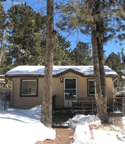 Photo of 47 Honeysuckle Road, Woodland Park, CO 80863 (MLS # 6239368)