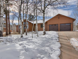 Photo of 1100 Wagon Place, Woodland Park, CO 80863 (MLS # 6281134)
