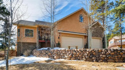 Photo of 1393 Masters Drive, Woodland Park, CO 80863 (MLS # 6349221)