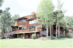 Photo of 820 Sun Valley Drive, Woodland Park, CO 80863 (MLS # 6669590)