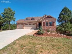 Photo of 1702 Painter Drive, Monument, CO 80132 (MLS # 6682678)