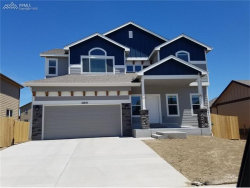 Photo of 10645 Outfit Drive, Colorado Springs, CO 80925 (MLS # 6760903)