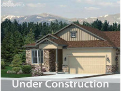 Photo of Ruffino Drive, Colorado Springs, CO 80921 (MLS # 6892336)