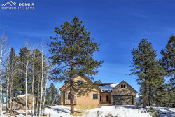 Photo of 146 Conifer Circle, Florissant, CO 80816 (MLS # 6917077)