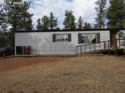 Photo of 1299 Pikes Peak Drive, Florissant, CO 80816 (MLS # 7112206)