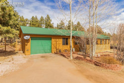 Photo of 1410 Juli Court, Woodland Park, CO 80863 (MLS # 7274432)